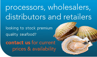 Champion Seafood | Processors, Wholesalers, Distributers and